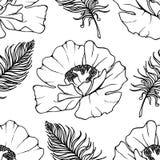 乱画单色鸦片羽毛无缝的样式背景纹理传染媒介 免版税库存图片