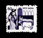 乳品业,农业serie,大约1982年 免版税库存图片