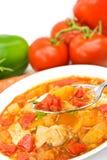 乳房鸡混合的汤炖煮的食物蔬菜 库存照片