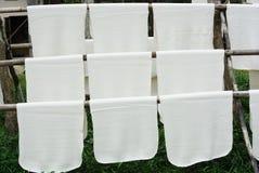 乳汁橡胶树 免版税图库摄影