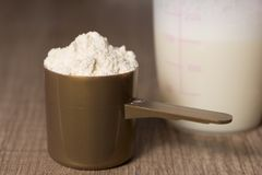 乳清蛋白 有香草味道粉末的,振动器金黄瓢 免版税库存图片