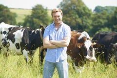 乳牛场场主画象领域的与牛 免版税库存图片
