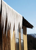 乳状的冰柱 免版税图库摄影
