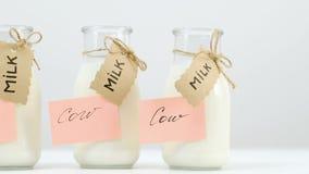 乳糖不允许大豆牛奶选择 股票视频