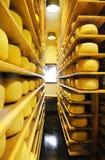 乳脂制造厂 免版税库存照片