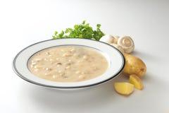 乳脂状的土豆蘑菇汤 库存照片