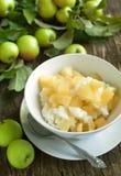 乳脂状的大米布丁用苹果和桂香 免版税库存照片