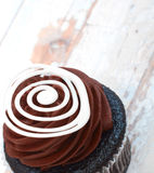 乳脂状的巧克力杯形蛋糕 库存照片