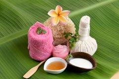 乳脂状的新草本面具用新鲜的牛奶、常春藤金瓜和蜂蜜,与泰国的自然成份的温泉 免版税图库摄影