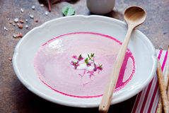 乳脂状的甜菜根汤 免版税库存图片