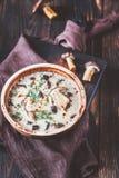 乳脂状的蘑菇汤的部分 免版税库存照片