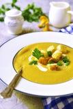 乳脂状的黄蘑菇汤 库存照片