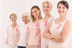 乳腺癌奋斗的标志 库存图片