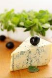 乳酪、橄榄和牛至 免版税图库摄影
