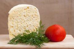 乳酪、蕃茄和绿色静物画  图库摄影