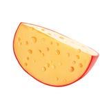 乳酪。 乳酪轮子。 免版税库存图片