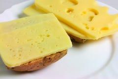 乳酪三明治 库存照片
