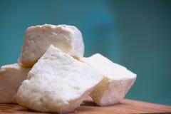 乳酪凝乳 免版税库存图片
