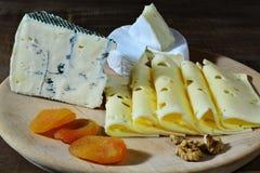 乳酪分类, emmentaler,青纹干酪,软制乳酪用脯 免版税图库摄影