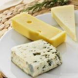 乳酪分类 免版税库存照片