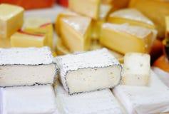 乳酪分类 图库摄影