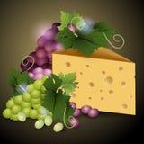 乳酪和成熟葡萄在黑暗的背景 库存照片