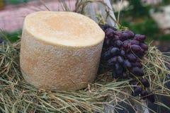 乳酪和葡萄在市场上 库存照片