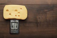 乳酪大片断在捕鼠器的 免版税库存图片