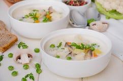 乳酪奶油汤用花椰菜、蘑菇和绿豆 库存照片
