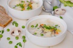 乳酪奶油汤用花椰菜、蘑菇和绿豆 库存图片
