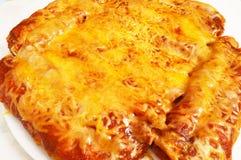 乳酪富有辣酱玉米饼馅 图库摄影