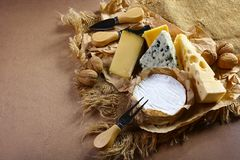 乳酪市场-咸味干乳酪、软制乳酪和模子在青斑乳酪品尝与坚果、快餐和乳酪刀子,大大小决议 食物banne 免版税库存照片