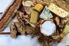 乳酪横幅-咸味干乳酪、软制乳酪和模子在青斑乳酪品尝与坚果、快餐和乳酪刀子,大大小决议 食物banne 免版税库存图片