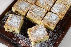 乳酪正方形用葡萄干,乳酪蛋糕 免版税库存照片