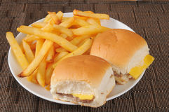 乳酪汉堡和油炸物 免版税库存照片