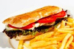 乳酪汉堡1 免版税库存图片