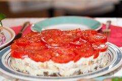 乳酪沙拉用在一个大圆的盘供食的蕃茄 免版税库存照片