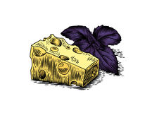 乳酪片断与紫色蓬蒿的 库存例证
