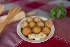 乳酪球和各式各样的肉丸 免版税库存照片