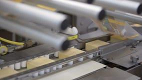 乳酪生产的传动机线 处理在食物工厂的乳酪 股票录像