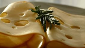 乳酪用在板材的迷迭香 与孔的乳酪在切板 与卷的乳酪 影视素材