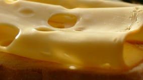 乳酪用在板材的迷迭香 与孔的乳酪在切板 与卷的乳酪 股票视频