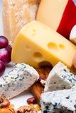乳酪用干果子和坚果 图库摄影