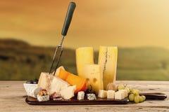 乳酪的各种各样的类型 库存照片