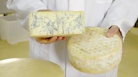 乳酪的生产 股票录像