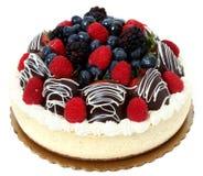 乳酪蛋糕涂了巧克力的果子草莓 免版税库存图片
