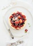 乳酪蛋糕用在上面的新鲜的庭院莓果 库存照片