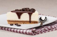 乳酪蛋糕用在白色板材的巧克力汁 免版税图库摄影
