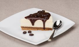 乳酪蛋糕用在白色板材的巧克力汁 免版税库存照片