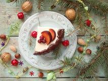 乳酪蛋糕用巧克力和柠檬 库存图片